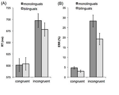 Flanker congruency effects in monolinguals and bilinguals